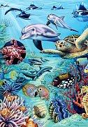 Tropische Gewässer